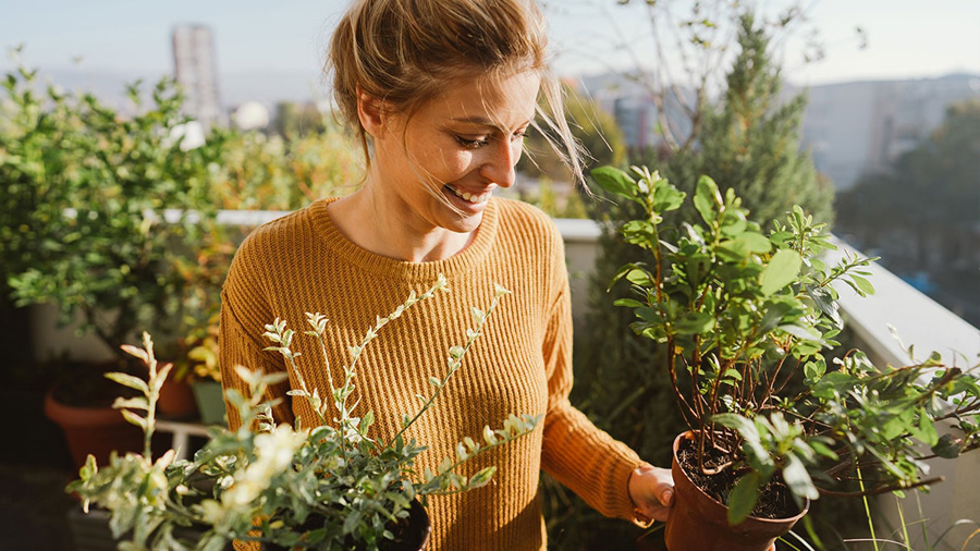 A person smiling in the middle of plants.